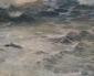 Вълните на Черно море в Националната галерия